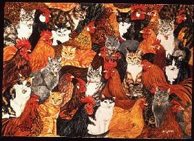 Chicken-Cats