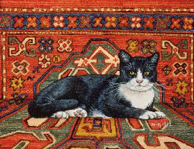 Second Carpet-Cat-Patch