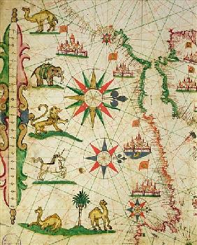 The North African Coast, from a nautical atlas, 1651(detail from 330919)