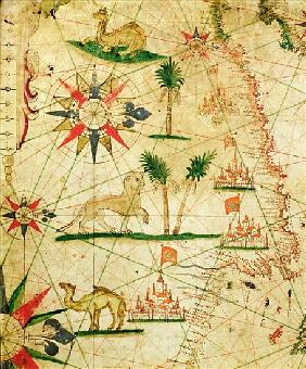 The North Coast of Africa, from a nautical atlas, 1651(detail from 330922)