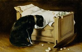 Dog Mourning Its Little Master