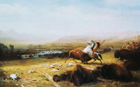 Indian on the buffalo hunting.