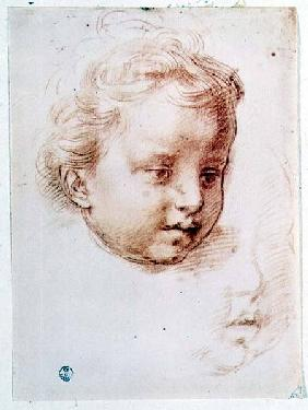 Study of a child's head (chalk on paper)