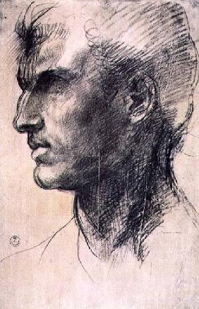 Study of a male head