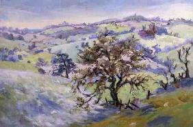 From Udimore Towards Peasmarch, Sussex, in winter (oil on canvas)