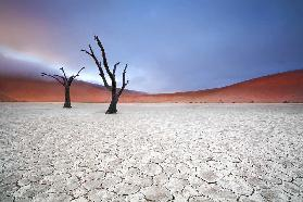 Mist over Deadvlei