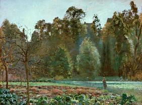 Pissarro, Camille : The cabbage field, Pontois...