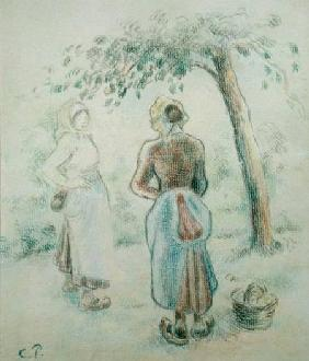 The Woman under the Apple Tree