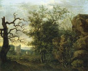Landscape with bare tree