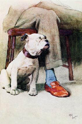 Bulldog (pen & ink & wash on paper)