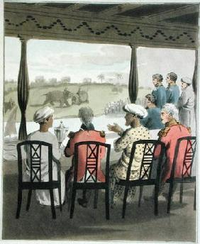 Marquis Wellesley and his Suite, at the Nabob of Oude's Breakfast Table, viewing an elephant fight,