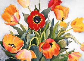 Orange and Red Tulips (w/c)