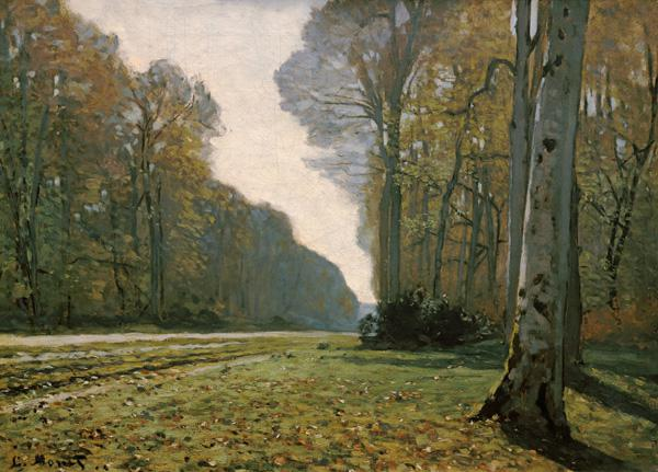 Pave de Chailly, forest di Fontainebleau