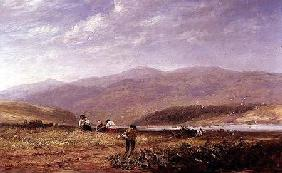 Haymakers in a Welsh Landscape