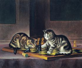 Kittens Playing Chess