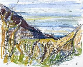 Towards Marsland Mouth, North Devon (pen and ink and and on paper)