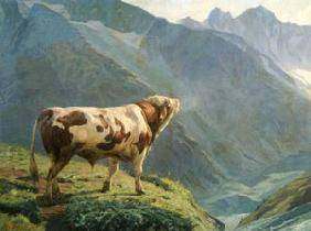 The Bull in the Alps