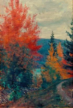 Autumn Colours, Valdres