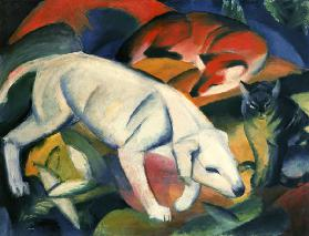 Three animals (dog, fox, cat)