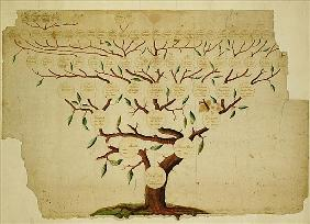 Bach Family Tree, c.1750-1770 (pen and ink and pencil on paper)