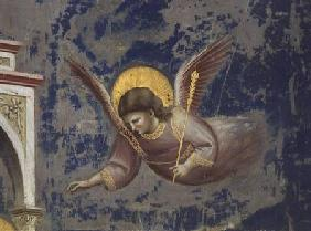 Angel, from the Presentation of Christ in the Temple
