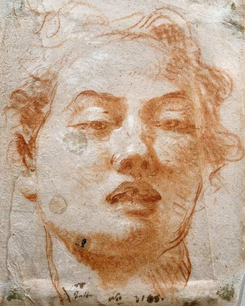 Youthful Head (chalk on paper)