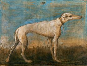 G.B.Tiepolo / Greyhound / Paint./ C18th