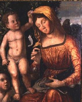 Madonna Sewing