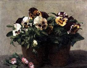 Fantin-Latour, Henri : Still Life of Pansies and ...