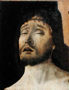 Head of the Dead Christ