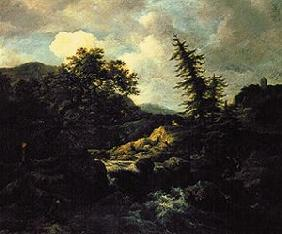 Mountain landscape with torrent.
