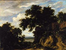 Wooded landscape.