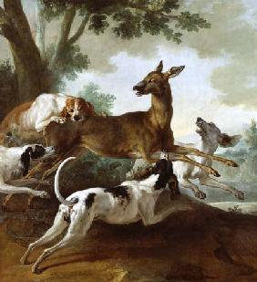 A Deer Chased by Dogs