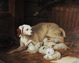 Bitch nursing puppies, detail from Lise et ses petits