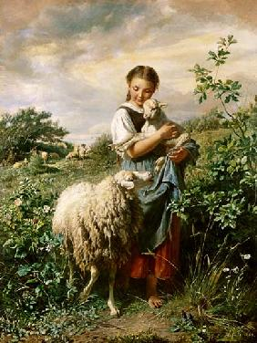 The little shepherdess 1866