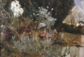 Study of Flowers and Foliage, for 'The Enchanted Garden'