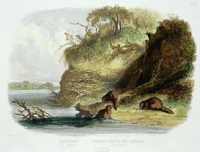 Beaver Hut on the Missouri, plate 17 from volume 1 of `Travels in the Interior of North America', en