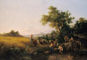 Italian landscape with ox cars during the grain ha