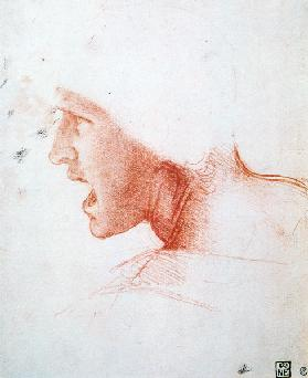 Study of a Warrior's Head for the Battle of Anghiari