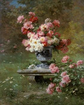 Peonies In An Urn In A Garden