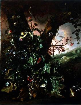 Still Life with Thistles and Butterflies