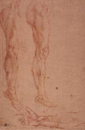 Studies of Legs and Arms