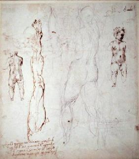 Study of the Christ Child and an Anatomical Drawing with Notes (black chalk & brown ink on paper) (v