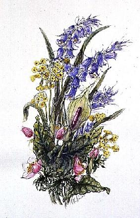 Bluebell posy with cowslips, dogroses and lily