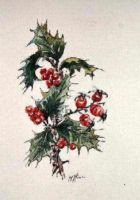 Holly and rosehips
