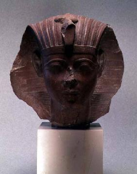 Head of a sphinx, possibly Amenophis II