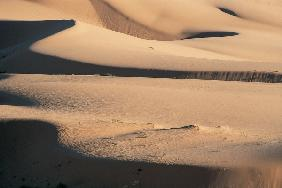 Coral pink sand dunes (photo)