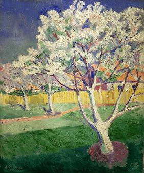 K.Malevich, Blossoming apple trees