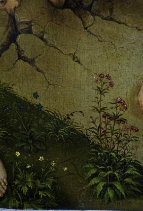 R.v.d. Weyden, Plants and flowers