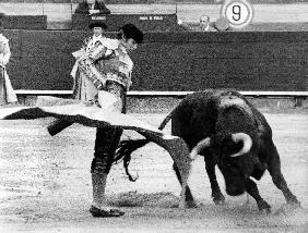 Spanish toreador Manuel Benitez called El Cordobes during bullfight in Castellano de la playa Spain